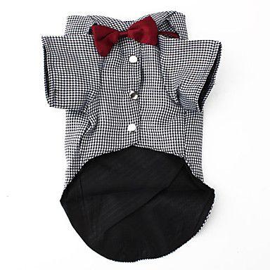 camisa bowtie inteligentes de estilo para cães (xs-xl) – BRL R$ 25,90                                                                                                                                                                                 Mais