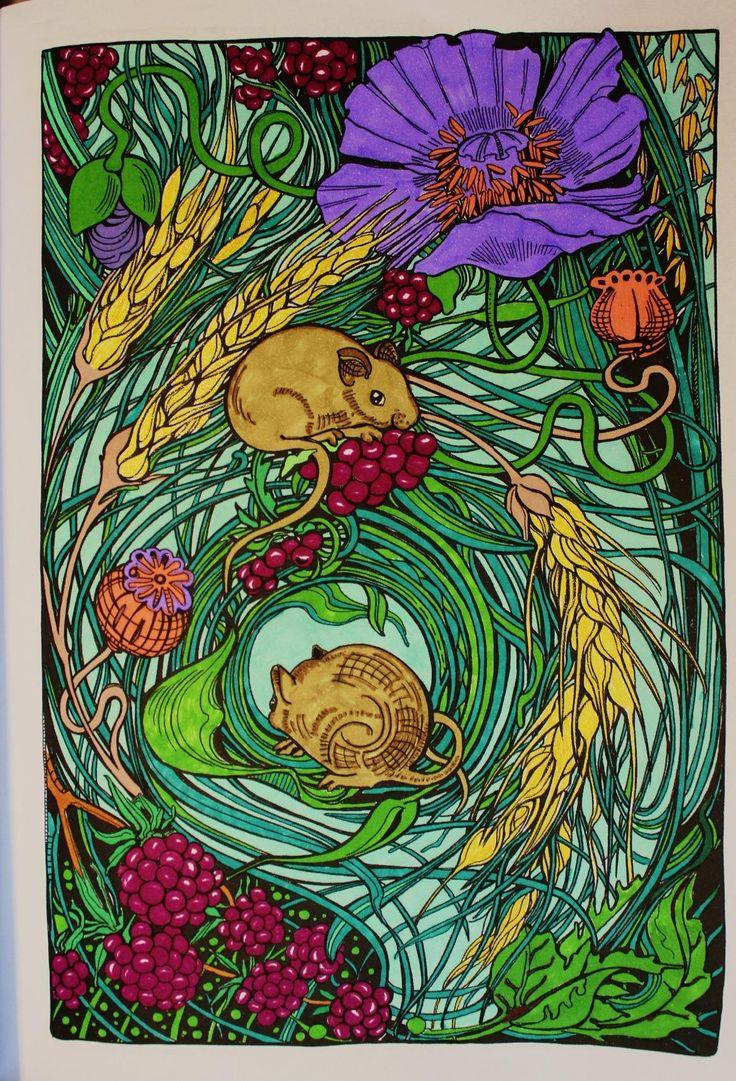 Botanical art coloring book - Amazon Com Manic Botanic Zifflin S Coloring Book Filled With Original Compelling Art