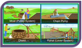 Class 8 CBSE Science Crop Production and Management Crop Protection - Wiki