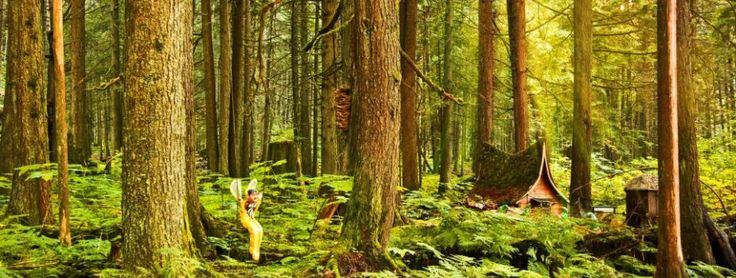 The Enchanted Forest, Revelstoke -