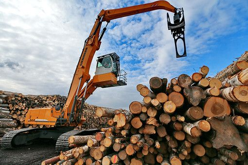 ВТБ идет лесом