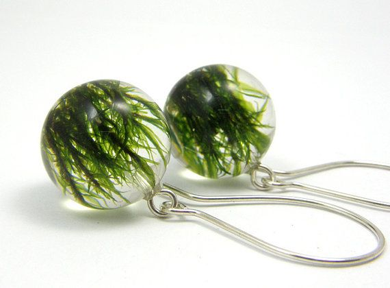 Moss Round Earrings, Forest Jewelry with Natural Moss Embedded in Clear Resin