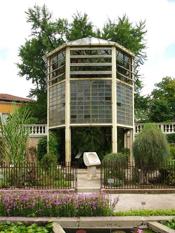 Orto botanico di Padova - Serra della Palma di Goethe