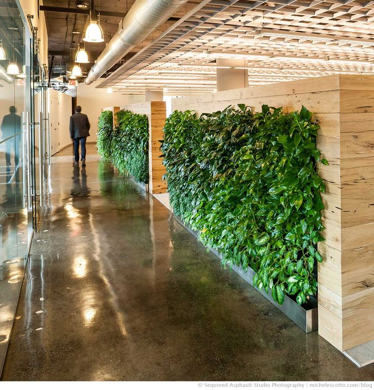 220 best contemporary office spaces images on pinterest for Green office interior design