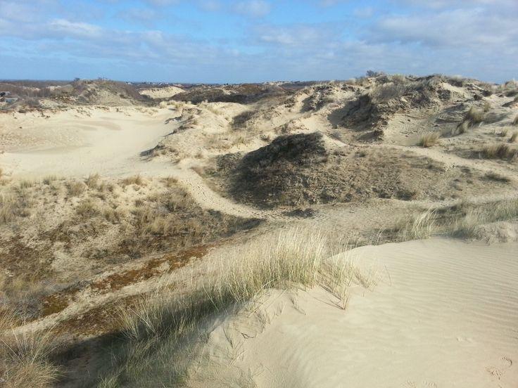 Promenade dans les dunes du Perroquet, à Bray-Dunes =>  http://www.kalagan.fr/dunes-perroquet-bray-dunes/
