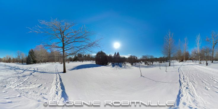 Botanical Gardin in Winter