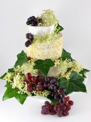 Cheese Wedding Cake or Tower to feed 30-45 Sophia