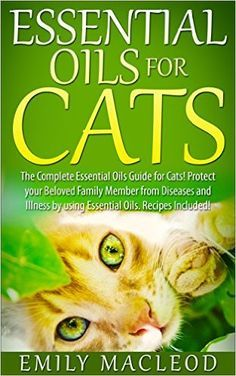 guide to safely using essential oils with cats- includes recipes for blends, too!  this ebook is free right now on Amazon- click image for link