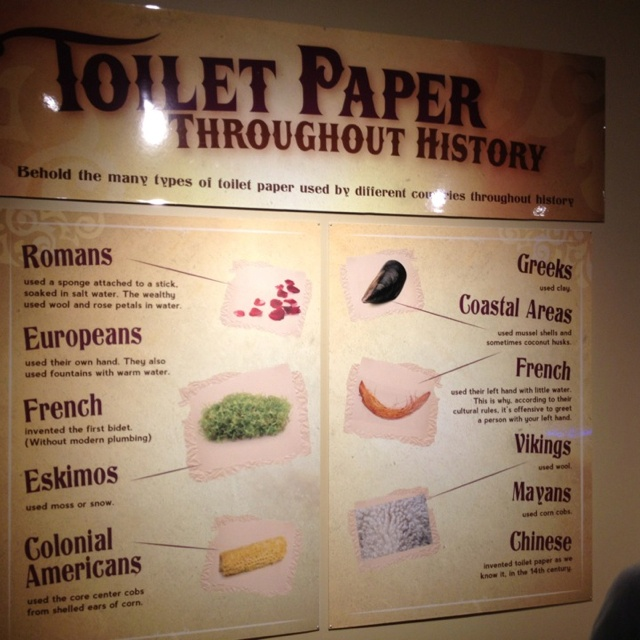An introduction to the origins and history of the toilet