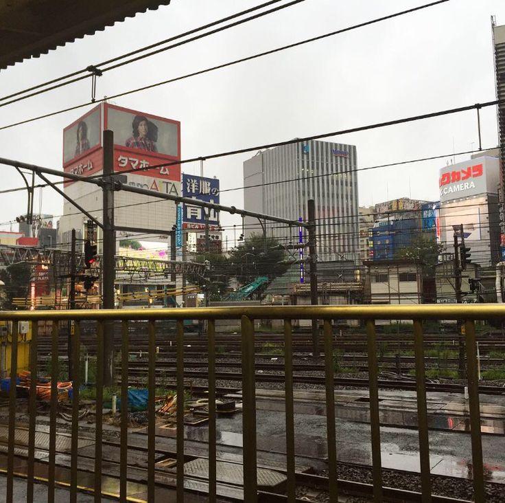 Raining in Tokyo...time to go... 🌸🇯🇵✈️ Byeeeeeeeeeeee