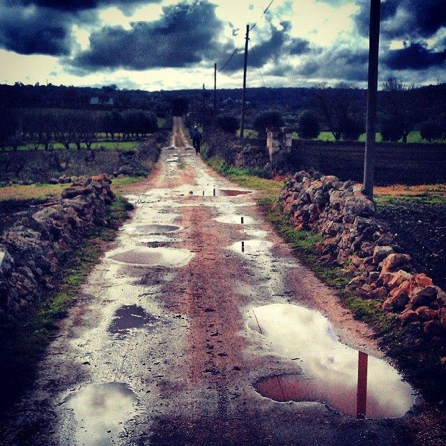 .@cenzointermite | Di strade sterrate #Puglia #bike #mtb #CeglieMessapica #murgia #valleditria #... | Webstagram