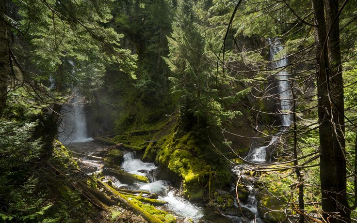In February, 2016, Oregon Field Guide aired their