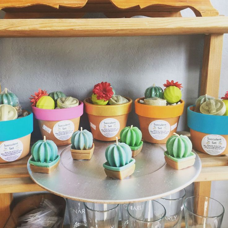 Guess what's back in stock?! Our adorable succulent gift sets with upcycled flower pot containers containing a lip balm, a bar soap, and a beeswax candle. Only $17.99+tax each! Order through dm, our website, or come into our store. #Succulents #Cactus #Cacti #Kake #Sustainable #Upcycled #Handmade #Natural #Organic #Beauty #Wellness #Etsy #Local #EssentialOil #StrongWomen #WomenEntrepreneur #Business