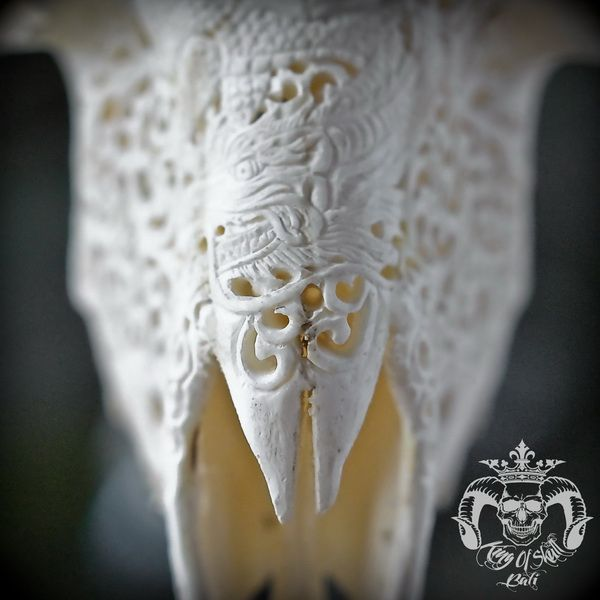 Hand Carved Ram Skull with Dragon in Skull Head PatternFind this Skull On Etsy