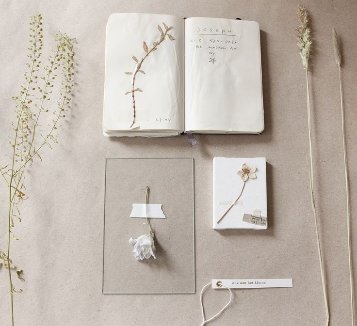 The making of our Pocket Herbarium
