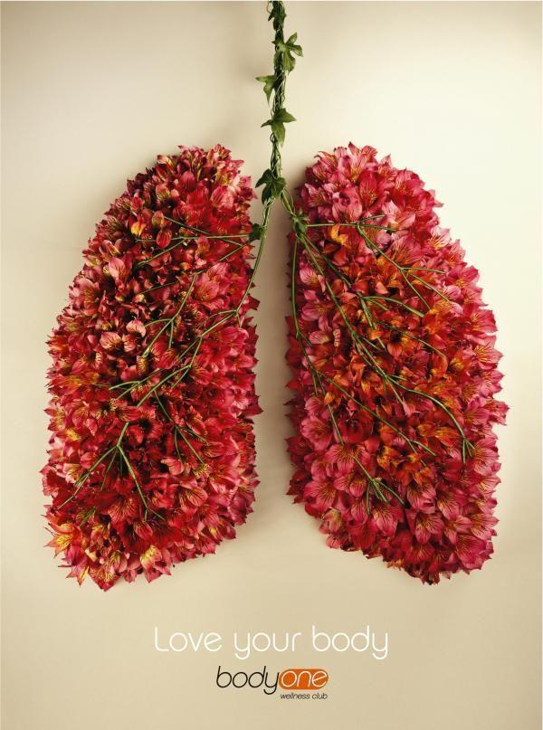 65 roses - Cystic Fibrosis Awareness