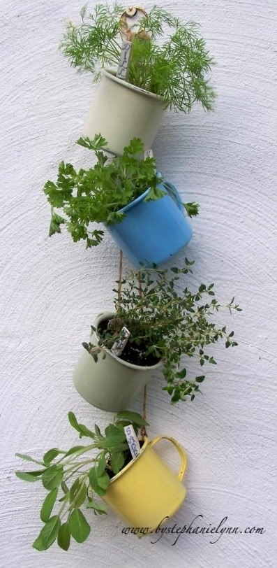 """herb hanging garden- make sure you put rocks or charcoal at the bottom of cups as they have poor drainage and can """"drown"""" plants!"""