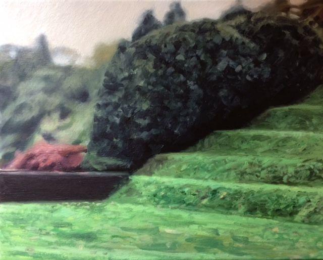 The Grassy Banks  Oil on linen, Dartington Hall gardens, Tiltyard, painting, art.