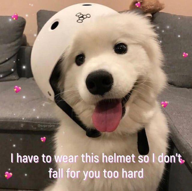 Reddit The Front Page Of The Internet Funny Boyfriend Memes Boyfriend Memes Cute Love Memes