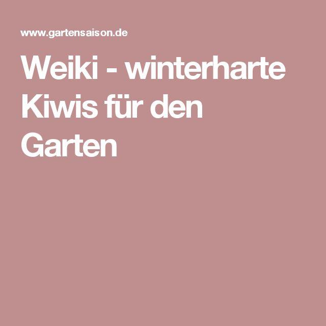 Weiki - winterharte Kiwis für den Garten