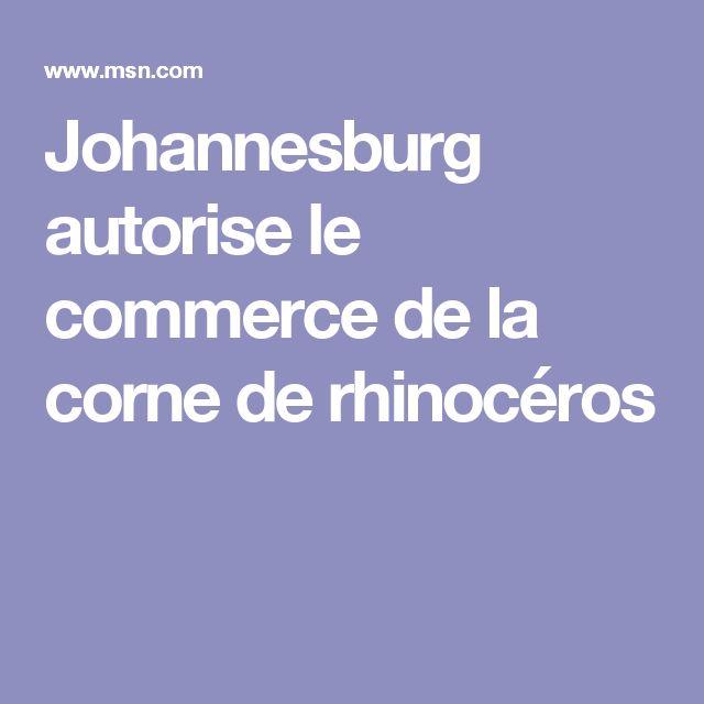 Johannesburg autorise le commerce de la corne de rhinocéros