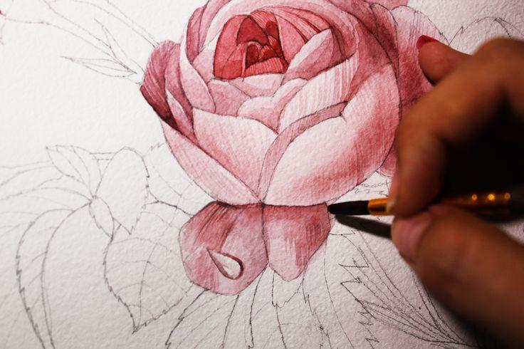 #watercolor #drawing #process