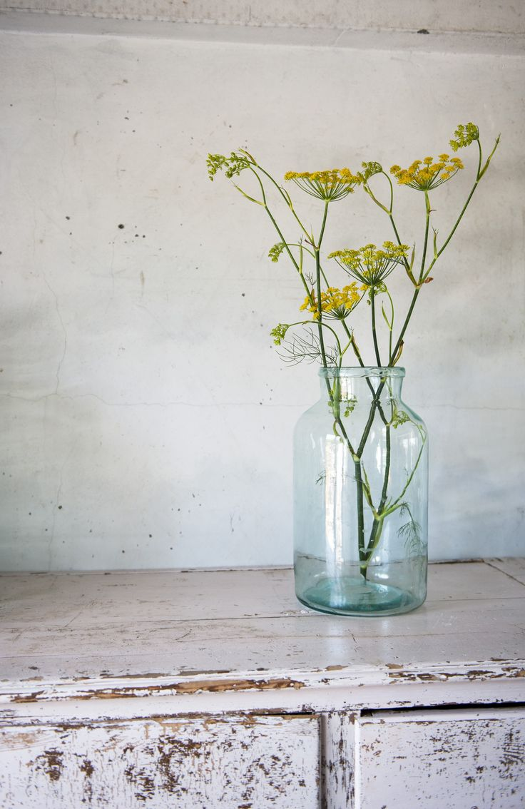 fennel, great flavor and simply gorgeous in our french vintage candy jars !  #newzealand #french #vintage