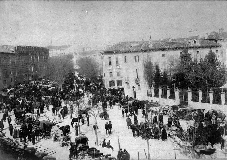 Carrozze parcheggiate in via Pallone durante la fiera dei cavalli a Verona, visibili la cinta delle mura comunali - fine 1800