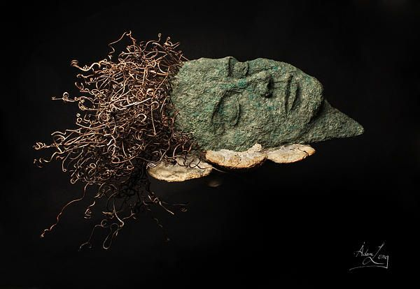 A wall-hanging relief sculpture of a natural woman's face with grapevine hair resting her head on a pillow of shelf fungus by Adam Long measuring approximately 12x9x3 inches.