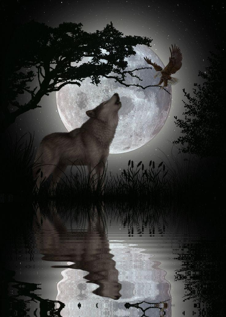 первой гифка волк одиночка делают это