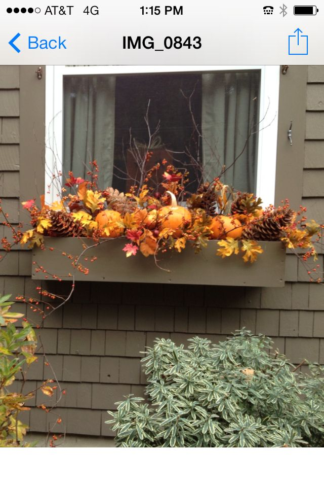 Fall window box: I have pinecones pumpkins! This is my favorite so far