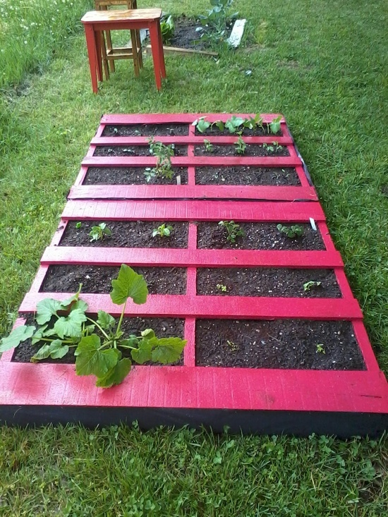 Pallet garden, recycled and repurposed. And even better that its pink.