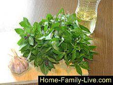 Хранение базилика - пошаговый фоторецепт - базилик в масле на зиму