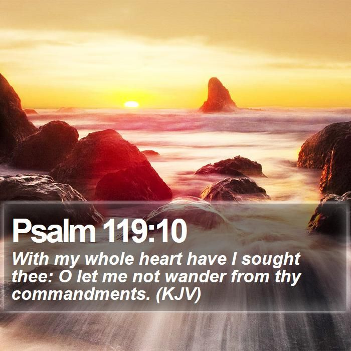 Psalm 119:10 With my whole heart have I sought thee: O let me not wander from thy commandments. (KJV)