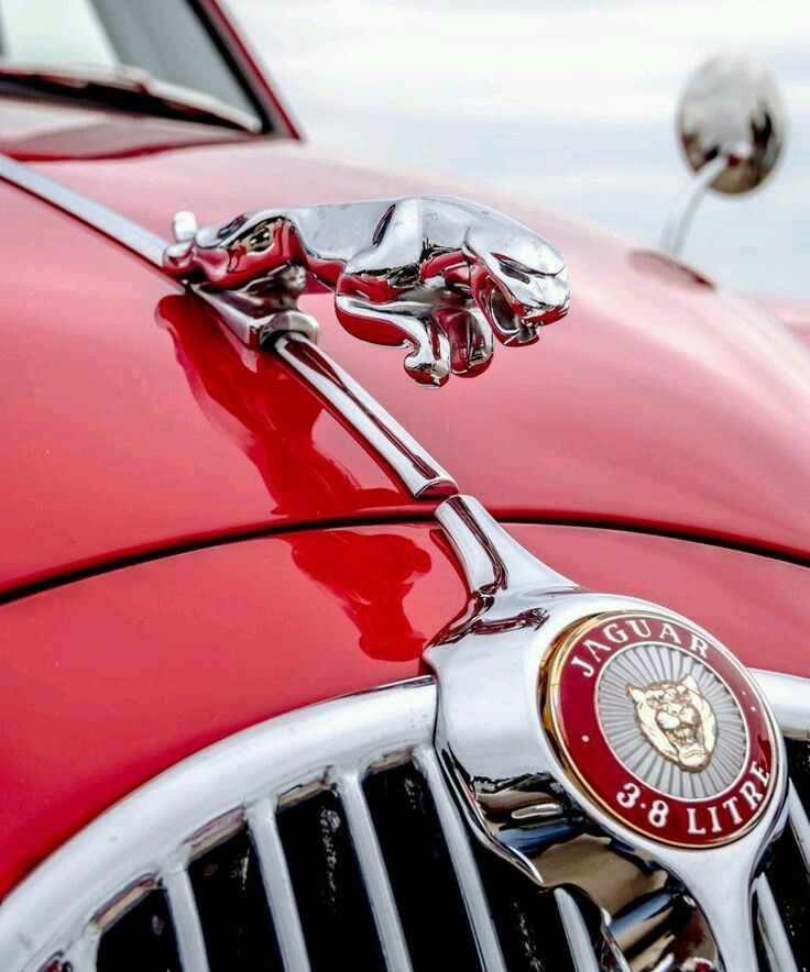 "crazy-joe-white:  ""Jaguar 3.8 litre. Beautiful chrome and red.  """