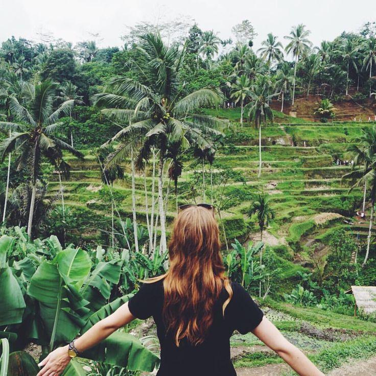 "Rice Terraces in Ubud, Bali (Indonesia) - 72 Likes, 13 Comments - Sarah   Ranga Adventures 🌻 (@rangaadventures) on Instagram: ""take time to make your soul happy 💙 ------------------------------ #lifewelltravelled #natgeotravel…"""