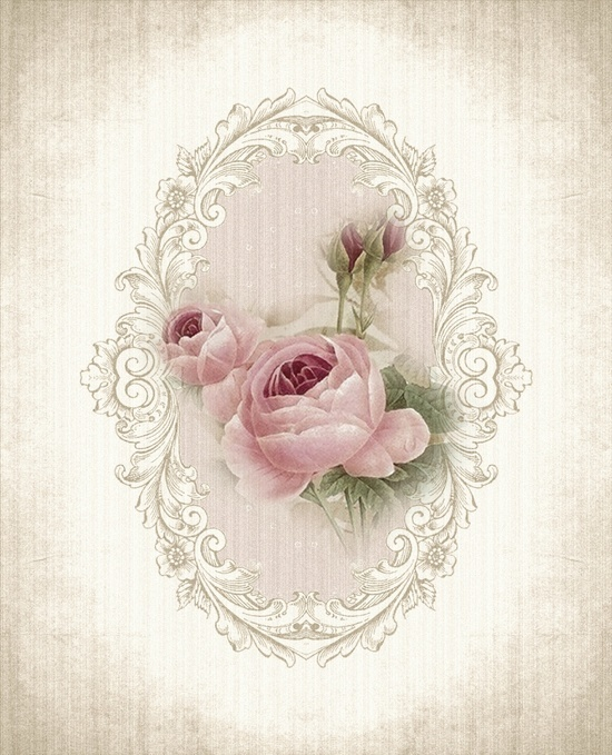 muted roses