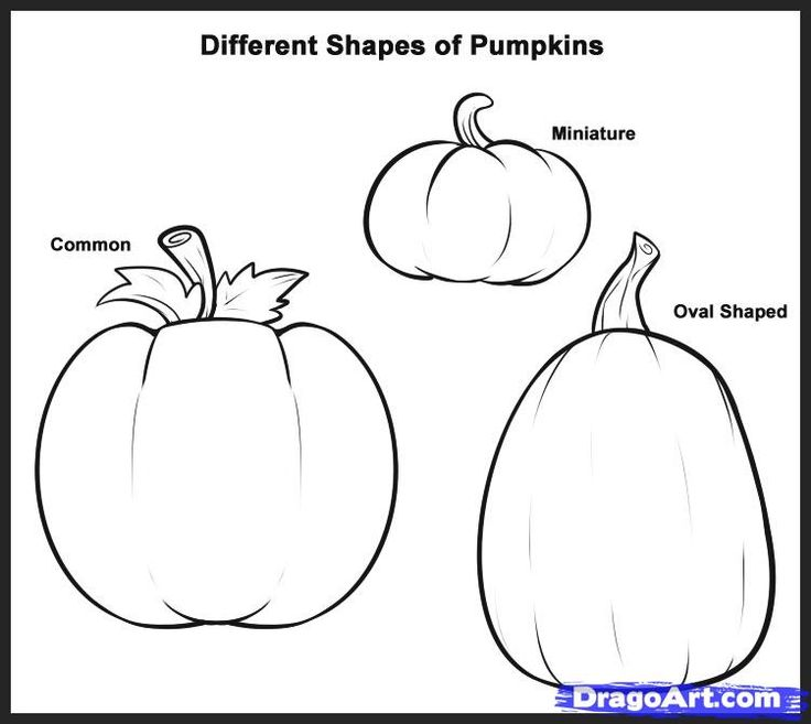 Good Free Drawings Online #10: How To Draw Pumpkins, Step By Step, Food, Pop Culture, FREE Online