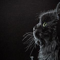 Chat aux pastels secs - portrait de chat