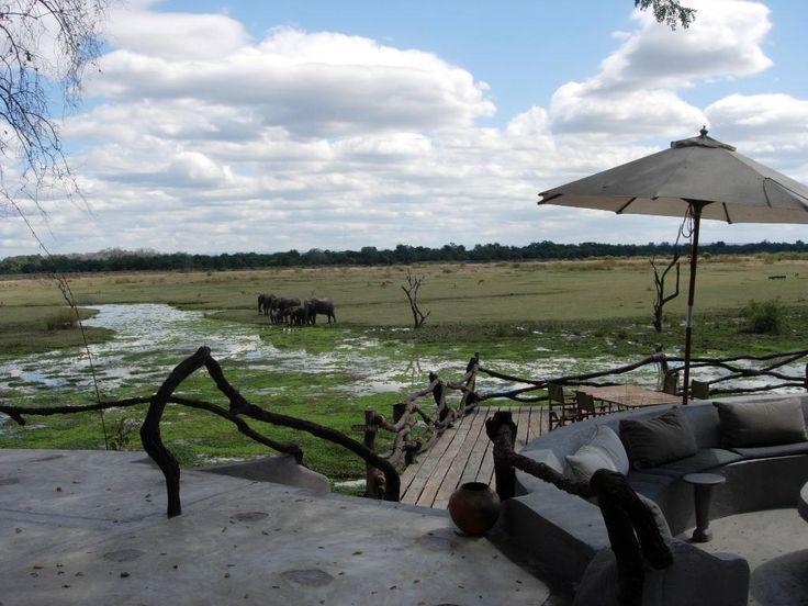 Zambia: South Luangwa National Park   TripAdvisor