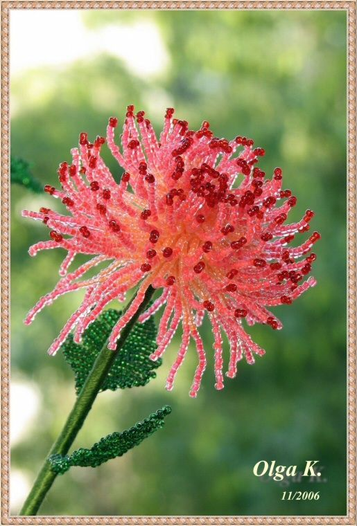 Цветы - beaded flowers - Olga Kushelev - Picasa Web Albums