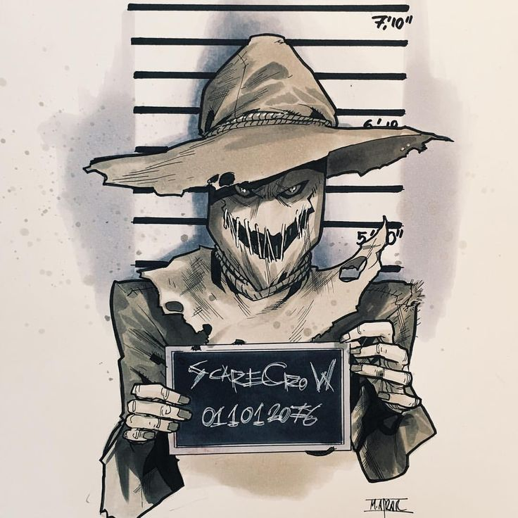 scarecrow                                                                                                                                                     More