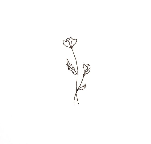 Line Drawing Flower Tattoo : Ideas about small flower tattoos on pinterest