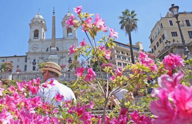 The Azaleas, May, and the Trinità dei Monti staircase. That's Rome!