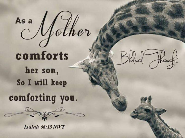JESAJA 66:13