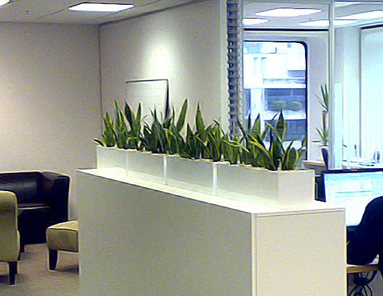 For a modern look in your office, contact www.greendesign.com.au