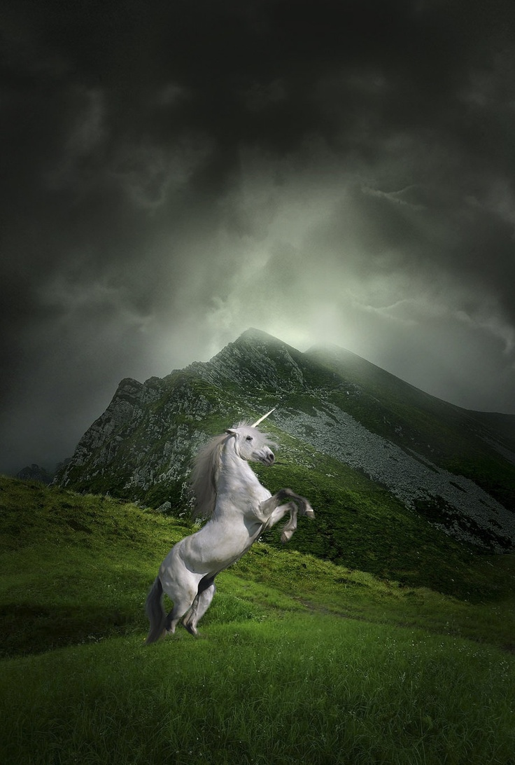 497 best images about unicorns and peguses on pinterest