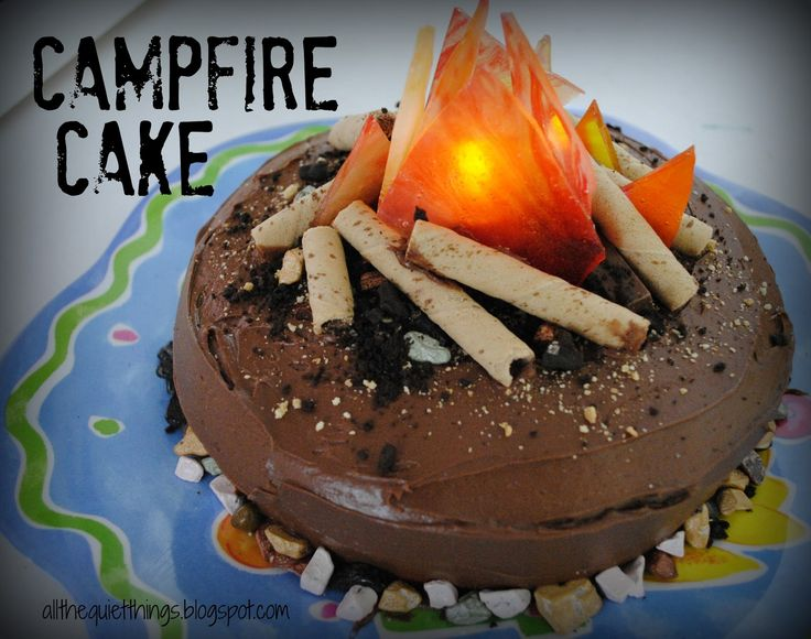 All The Quiet Things Campfire Cake  Party Cakes