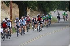 Biking in Sonoma County is very popular. We have three excellent bike shops in town. Levi Liepheimer's Gran Fondo is every October when 7000 riders line up for the tour!