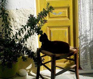 Small Discoveries #106 Μια κυκλαδίτικη γωνιά βγαλμένη από καρτ-ποστάλ. (http://gynaikaeveryday.gr/?page=calendar&day=2016-09-08)